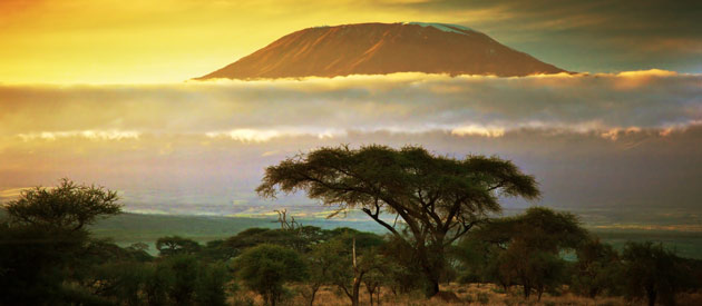 AFRICA TRAVEL INFORMATION